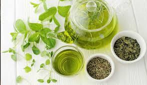 فوائد الشاي الأخضر المجفف | الشرقية توداي